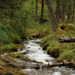 Stock Photo: River stream