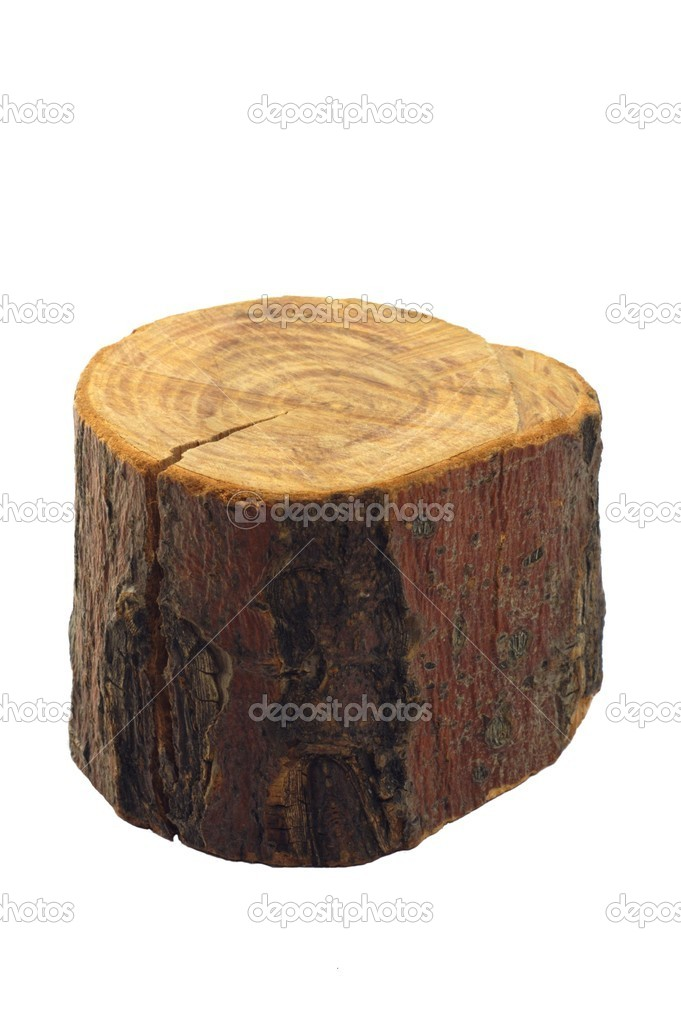 Piece of wood isolated — stock photo