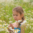 Stock Photo: Little Girl Picking Flowers