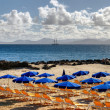 Canary island beach — Foto Stock