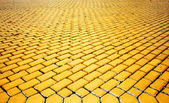 Yellow pavement — Stock Photo