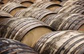 Barriles de whisky — Foto de Stock