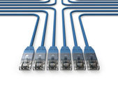 Networking, Network cables, LAN cables — Stockfoto