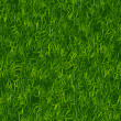 Green Grass Pattern — Stock Photo