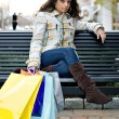 Royalty-Free Stock Photo: Shopping Girl