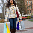Pretty Girl Shopping — Stock Photo #6676300