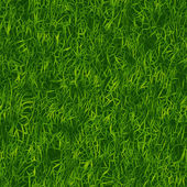 Motif de l'herbe verte — Photo