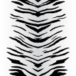 Stock Vector: Zebra Stripes Vector