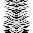 Zebra Stripes Vector - Stock Vector