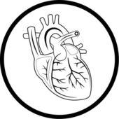 Vector heart icon — Stock Vector