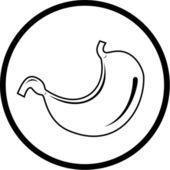 Vector stomach icon — Stock Vector