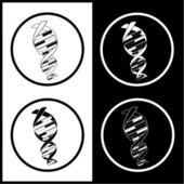 Vector DNA icons — Stock Vector