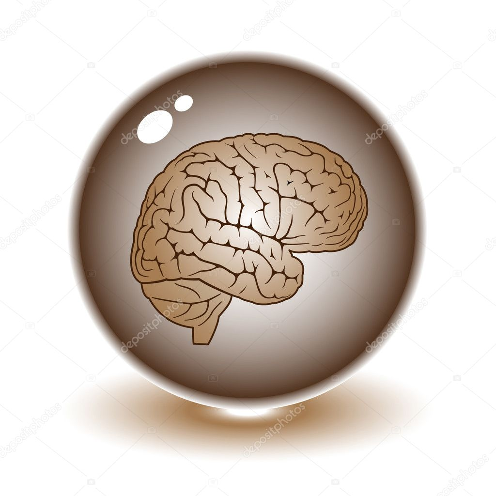 Vector brain illustration. Simply change. Other medical vectors you can see in my portfolio. — Stock Vector #6721843