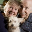 Portrait of Senior Couple with Dog — Foto Stock #6623900