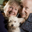 Portrait of Senior Couple with Dog - Stock Photo