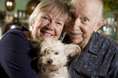 Portret van senior koppel met hond — Stockfoto