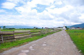 Suburban scenery — Stock Photo