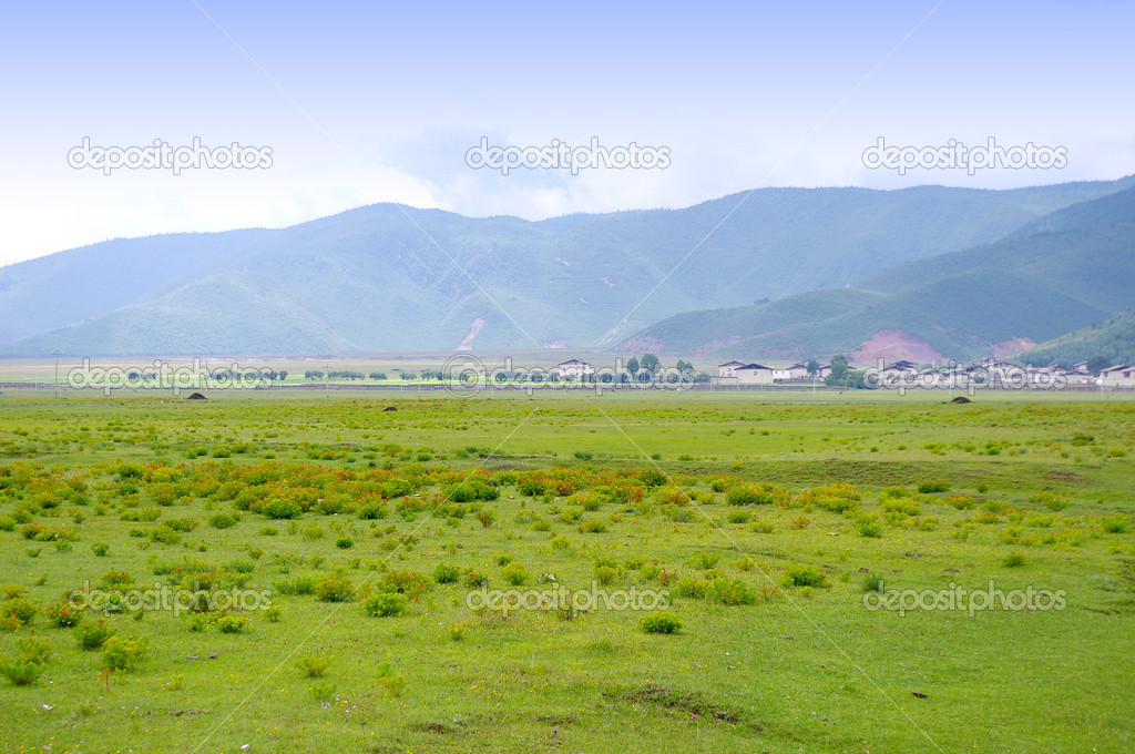 Beautiful rural countryside — Stock Photo #6693805