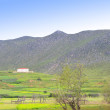 Stock Photo: Beautiful pastoral countryside