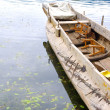 Wood boat — Stock Photo #6734099