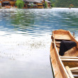 Wood boat — Stock Photo