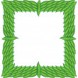 Square frame from green leaves — Stock Photo