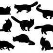 Cat's silhouettes - Stock Photo