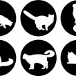 Logo cats, cat buttons, cat icons — 图库照片