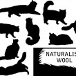 Set of detailed cat's silhouettes - Stock Photo