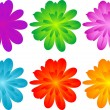 Set of color flowers for your design — Stock Photo #6666669