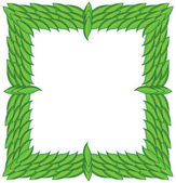 Square frame from green leaves — Stockfoto