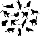 Big set of cats silhouettes — Stock Photo