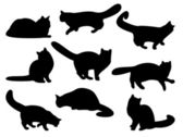Cat's silhouettes — Stock Photo