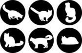 Logo cats, cat buttons, cat icons — Stock Photo