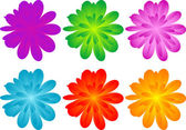 Set of color flowers for your design — Stock Photo