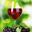 Ripe grapes and glass of wine on green background — Stock Photo #6659793