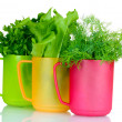 Royalty-Free Stock Photo: Fresh parsley, sorrel and dill in cups