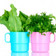 Royalty-Free Stock Photo: Fresh parsley and sorrel in cups