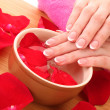 Hands with french manicure relaxing in bowl of water with rose petals — Stockfoto