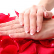 Beautiful woman hands with french manicure and rose petals on pi — Stock Photo #6660471
