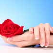 Couple of woman hands with red rose — Stock Photo