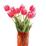 piękne różowe tulipany w wazonie na białym tle — Zdjęcie stockowe