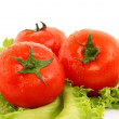 Red tomato vegetables on the green salad background — Stock Photo #6661459