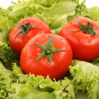 Royalty-Free Stock Photo: Red tomato  vegetables   on the green salad  background