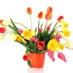 Pink tulips on white background — Stock Photo
