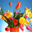 Flowers in the pink box — Stock Photo