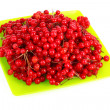 Red berries of viburnum isolate on white — Stock Photo #6668292