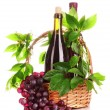 Red wine and grapes isolated on white — Stock Photo #6668653