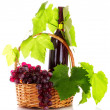 :red wine and grapes in basket isolated on white — Stock Photo #6668676