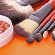 Royalty-Free Stock Photo: Cosmetic brushes on the orange background